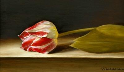 Tanja Moderscheim - Wapen van Leiden tulip 1750